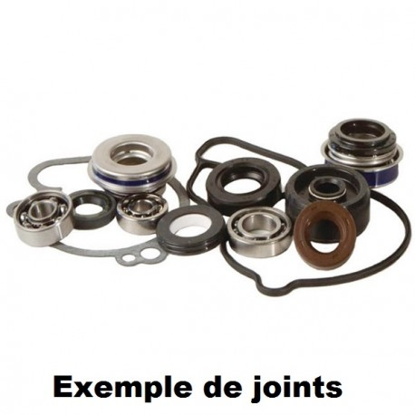 KIT JOINTS REPARATION POMPE A EAU HOT RODS SXF 250 06/12